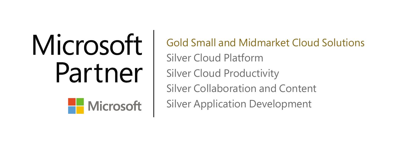 Microsoft Partner Network Gold
